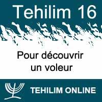 Tehilim 16