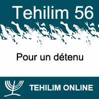 Tehilim 56