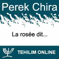 Perek Chira : La rosée dit