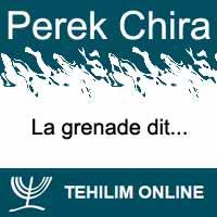 Perek Chira : La grenade dit