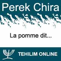 Perek Chira : La pomme dit