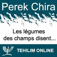 Perek Chira : Les légumes des champs disent