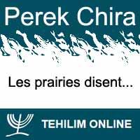Perek Chira : Les prairies disent