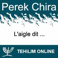 Perek Chira : L'aigle dit