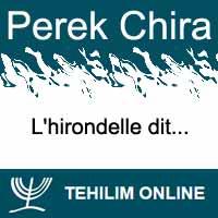 Perek Chira : L'hirondelle dit