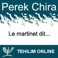Perek Chira : Le martinet dit