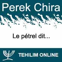 Perek Chira : Le pétrel dit