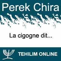 Perek Chira : La cigogne dit
