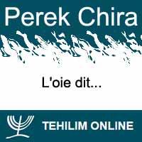 Perek Chira : L'oie dit