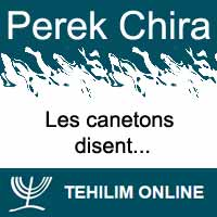 Perek Chira : Les canetons disent