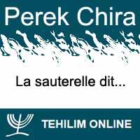 Perek Chira : La sauterelle dit
