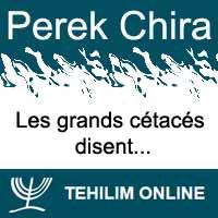 Perek Chira : Les grands cétacés disent