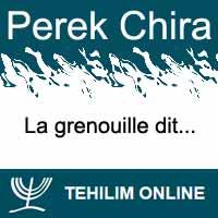 Perek Chira : La grenouille dit