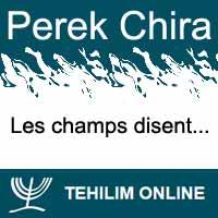 Perek Chira : Les champs disent
