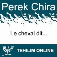 Perek Chira : Le cheval dit