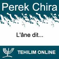 Perek Chira : L'âne dit