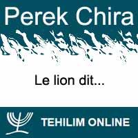 Perek Chira : Le lion dit