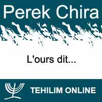 Perek Chira : L'ours dit