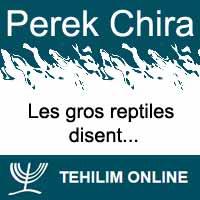 Perek Chira : Les gros reptiles disent