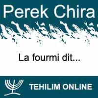 Perek Chira : La fourmi dit