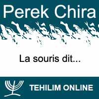 Perek Chira : La souris dit
