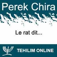 Perek Chira : Le rat dit
