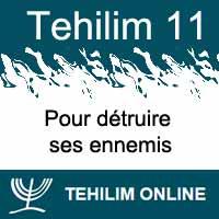 Tehilim 11