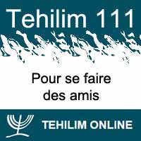 Tehilim 111