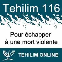 Tehilim 116