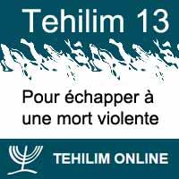 Tehilim 13