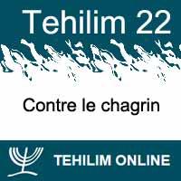 Tehilim 22