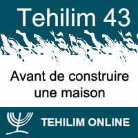 Tehilim 43