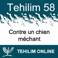 Tehilim 58